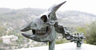 skeleton-408297_640