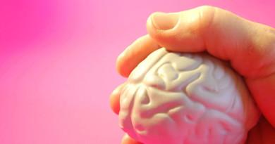 brain-in-hand-1312350-1279x849