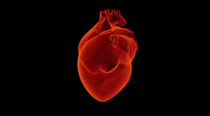 heart-1767552_1920