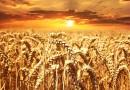 Od września sporo zmian dla polskich rolników