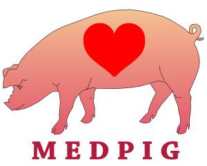 MEDPIG-logo