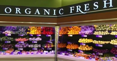 organic-1341558_960_720